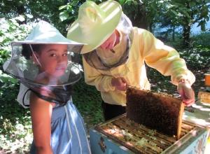 Am Bienenstand im Schulgarten Moabit